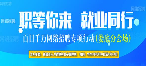 """2020年娄底市""""百日千万网络招聘专项行动""""--智汇人力分会场"""