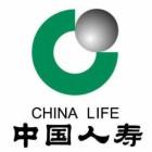 中国人寿保险股份有限公司(beplay 下载分公司)